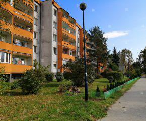 Ustawne, 3-pokojowe mieszkanie w b. dobrym stanie, blisko Clepardii