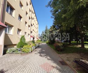 Mieszkanie na wynajem ul.Kosynierów