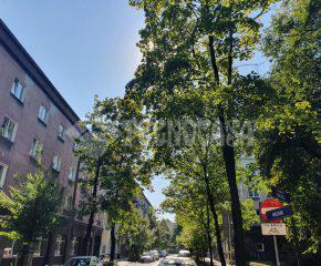 MIEJSCE POSTOJOWE do wynajęcia w centrum miasta – Stare Grzegórzki